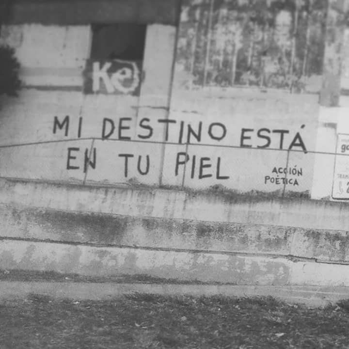 Mi destino está en tu piel  #artepublico #accionpoetica