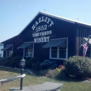 Hazlitt Winery, Hector, NY. Pinot Gris is my favorite!