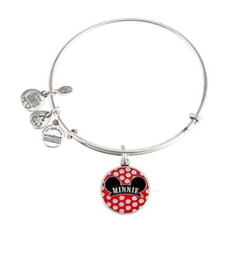 Best Disney World Alex Ani Bangle Charm Bracelets Images On - Alex and ani cruise ship bangle