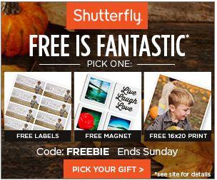 Shutterfly Freebies!