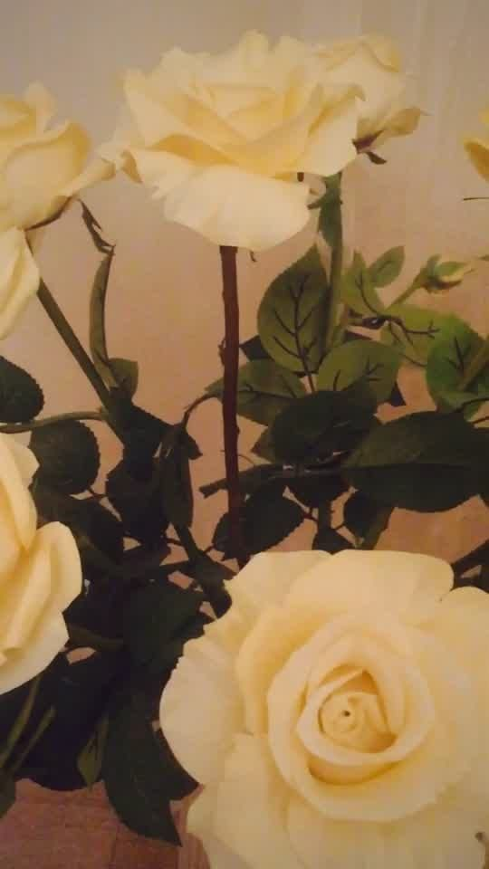 Fyuse - Розы