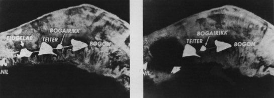 Here is a link to a brief article outlining the science behind the bomb: Make sure especially you remember who Edward Teller is. The first test took place on Elugaleb Island in the Enewetak Atoll i...