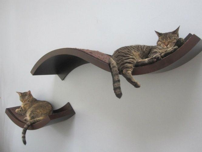 Prateleiras como das Urban Pet House (www.urbanpethaus.com) podem entreter os bichanos mesmo em ambientes com pouco espaço. Para evitar acidentes, é importante que sejam bem fixadas à parede