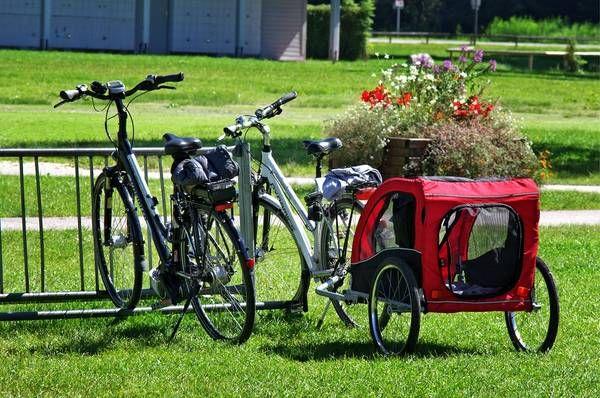 Lr Steinkellner Sicherheit Bei Fahrradern Mit Kinderanhangern
