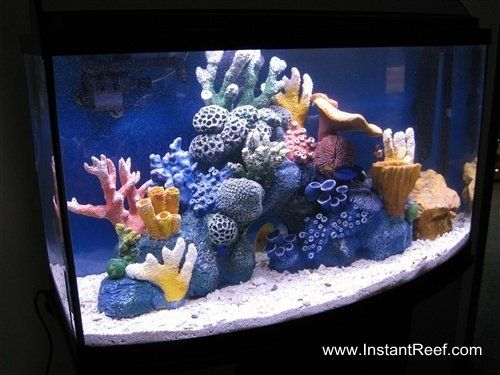 How to make marine aquarium set up easy salt water fish for Aquarium decoration set