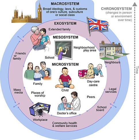 system development life cycle essay
