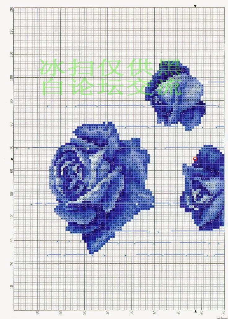 Rose blu 3
