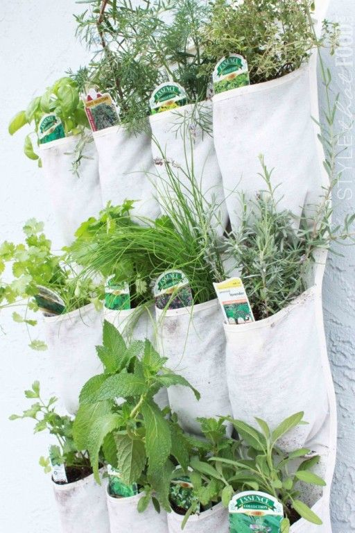 HerbGarden via Culy