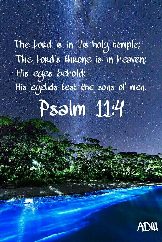 The LORD is in his holy temple, the LORD'S throne is in heaven: his eyes behold, his eyelids try, the children of men. ~Psalm 11:4