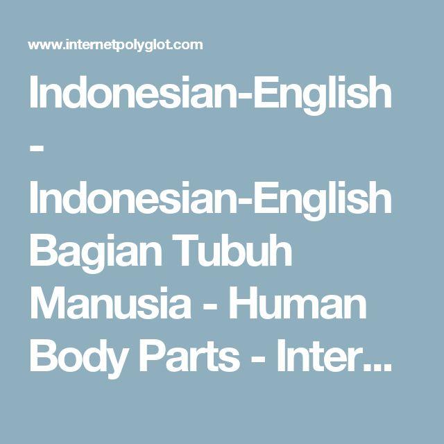 Indonesian-English          - Indonesian-English Bagian Tubuh Manusia - Human Body Parts - Internet Polyglot