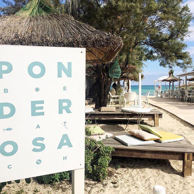 Relax Food In Ponderosa Beach Playa De Muro Mallorca