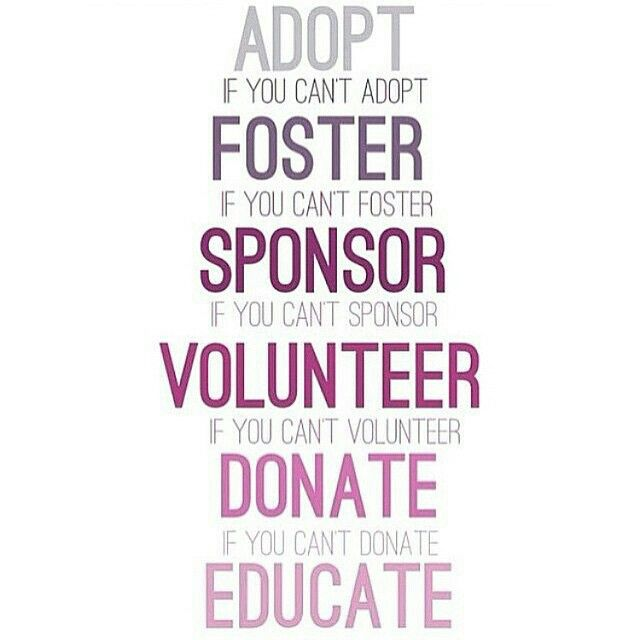 Animal love. #rescuelife #adoptdontshop #educate