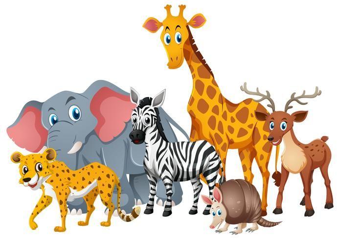 Wild Animals Together In Group Animals Wild Wild Animals Vector Animals