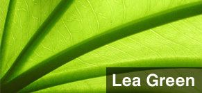 Lea's green ethics are internationally recognised.
