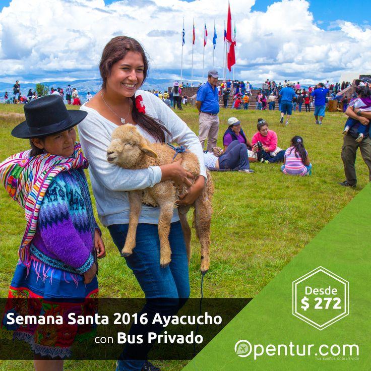 ¡Celebra Semana Santa en Ayacucho! con Bus Privado Desde: $ 272 #SemanaSanta #Ayacucho #Peru Para mayor información, enviar un INBOX o Llámanos al 945719026 / WhatsApp: +51 945719026