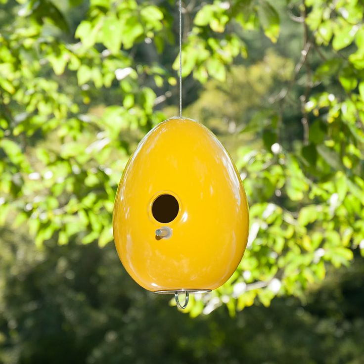 Goldenrod Yellow Egg Bird House in Nature