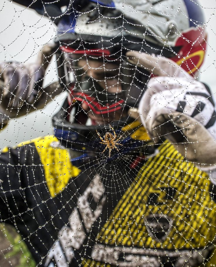 Behind the web. #redbull giveyouwings #video