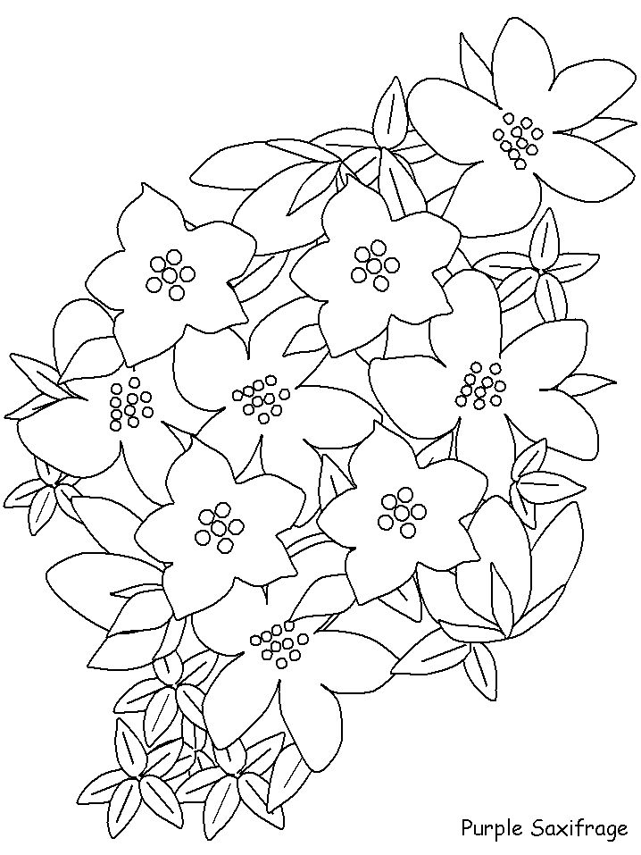 tamarack wv coloring pages - photo #28