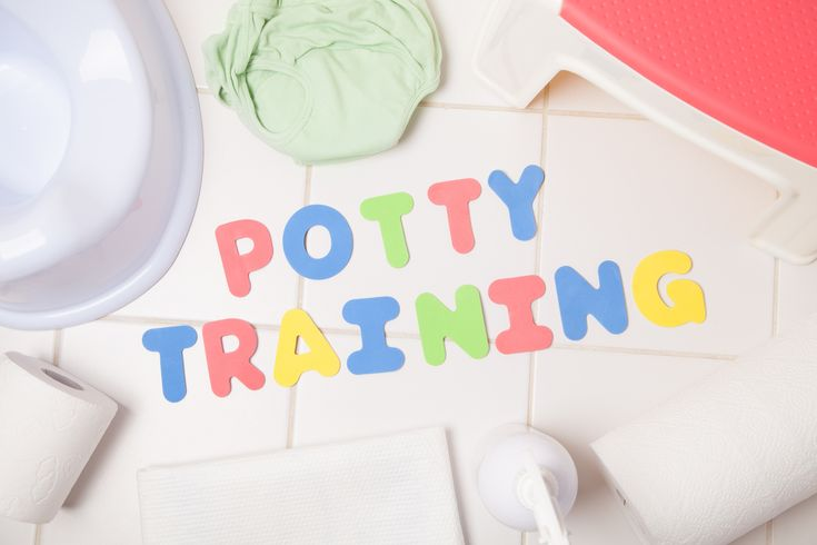 My first attempt at potty training my toddler resulted in