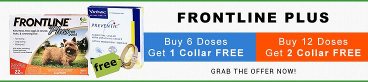 Buy #Frontline #Plus & Get #Preventic #Collar #Free.. Hurry!!