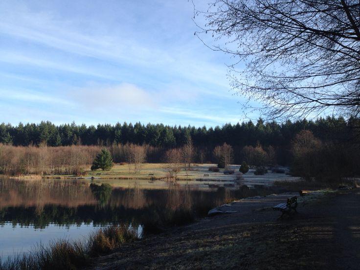 Surrey Timber Park