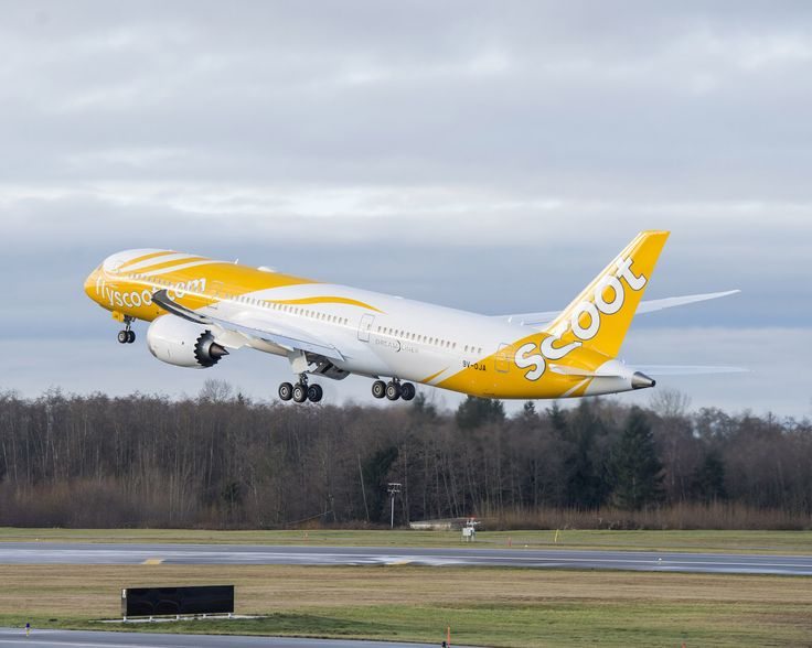Scoot 787 Boeing Dreamliner Visit New Zealand and take flying lessons