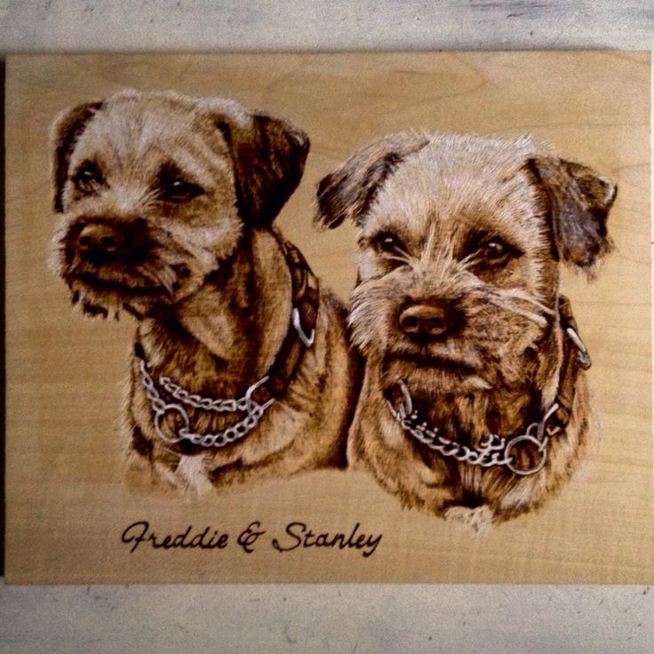 Dog pyrography portrait by Martin peacock