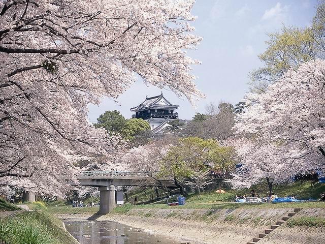 岡崎公園(愛知県岡崎市)