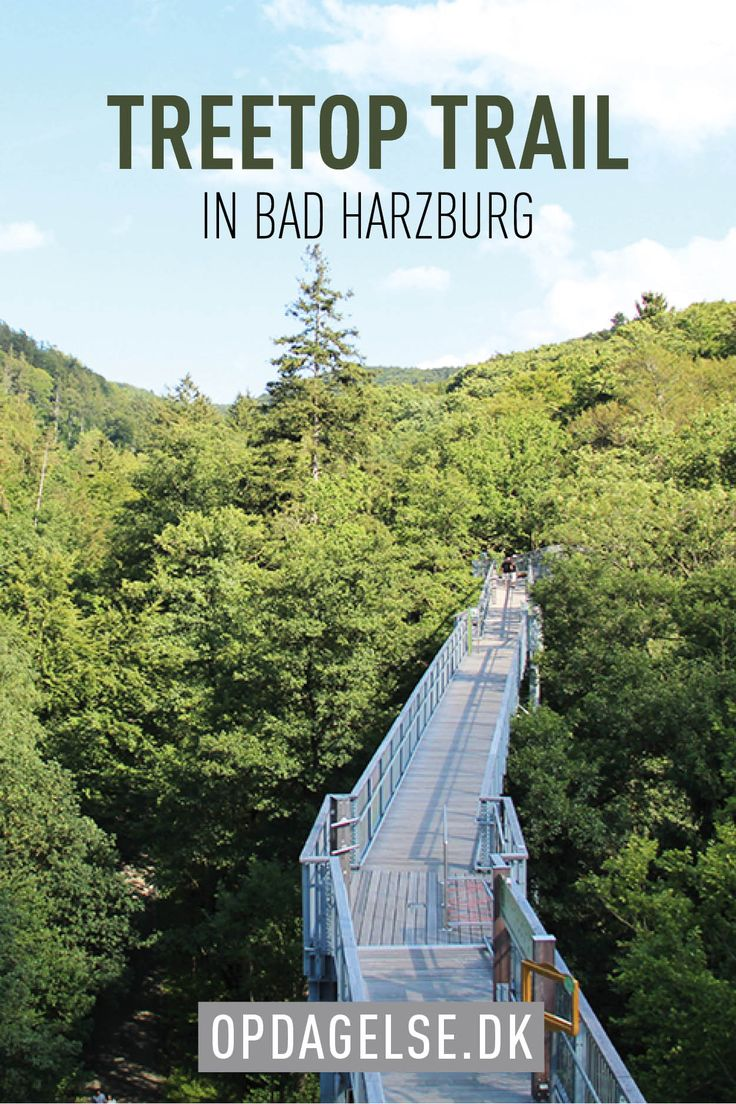 Bad Harzburg - treetop trail
