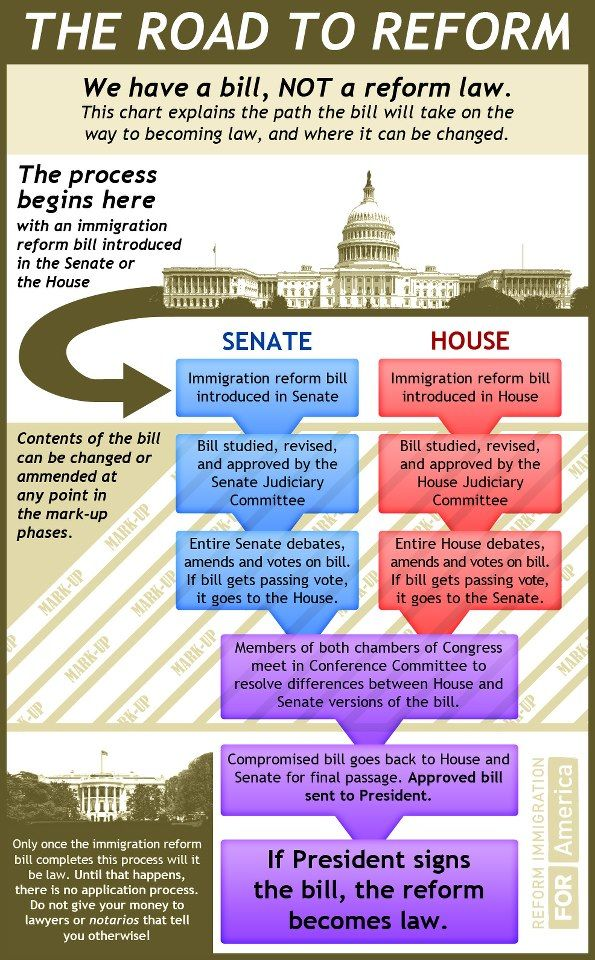 Hey does anybody know anything about immigration laws?