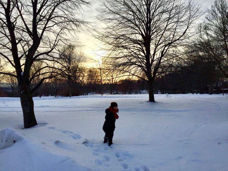 Quoi faire à Québec en hiver si vous n'avez pas de voiture – Terrisse de poche #winter #quebec #canada #snow #hiver