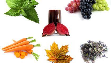 Pigmentos naturales orgánicos responsables del color de los alimentos