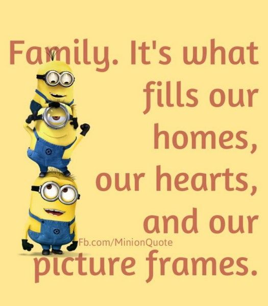 Image result for funny quotes on family