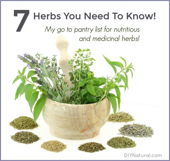 List of Herbs Medicinal Nutrition