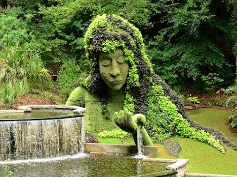 239 best How Does Your Garden Grow? images on Pinterest   Backyard ...