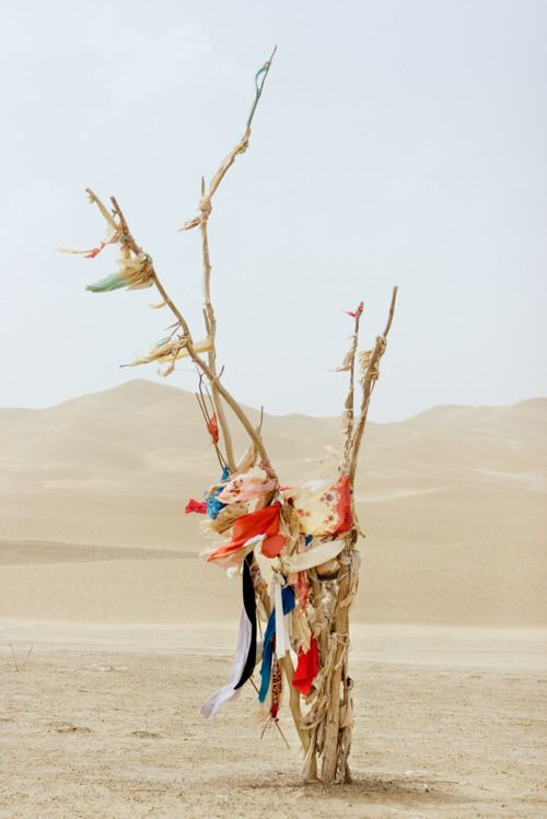 Colour in the desert