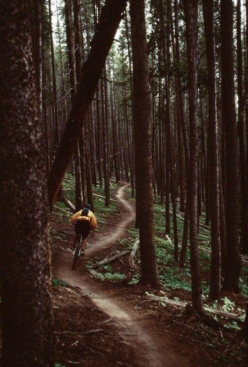 Best 25 Mountain Bike Trails Ideas On Pinterest Mountain Biking