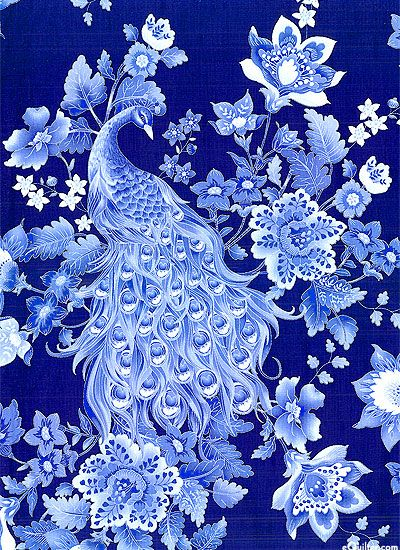 Plume - Royal Peacocks