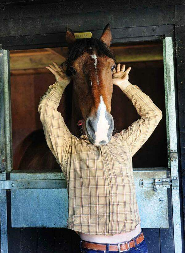 """Martin Clunes and Chester...""""why the long face""""?"""