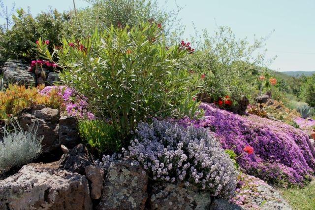 splendidi giardini