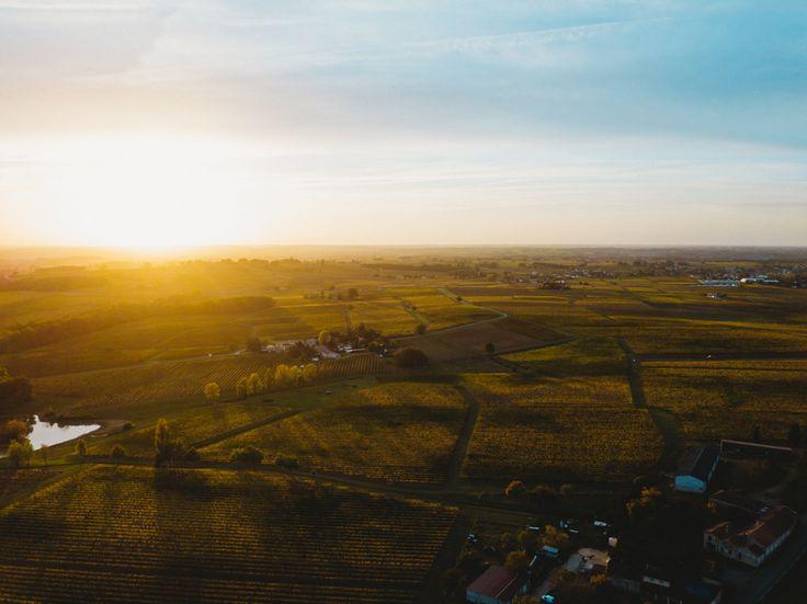 "237 mentions J'aime, 2 commentaires - DEFTOM (@deftom_filmaker) sur Instagram: ""Sunset on Vines . . . . #dronegear #aerialphotography #gofly #godive #drone #dji #mavicpro…"""
