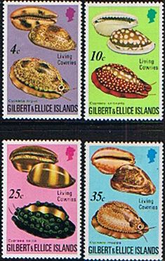 Gilbert and Ellice Islands 1975 Crowrie Shells Set Fine Mint SG 247/50 Scott 241/4 Other Pacifi Islands and Commonwealth Stamps Stamps HERE