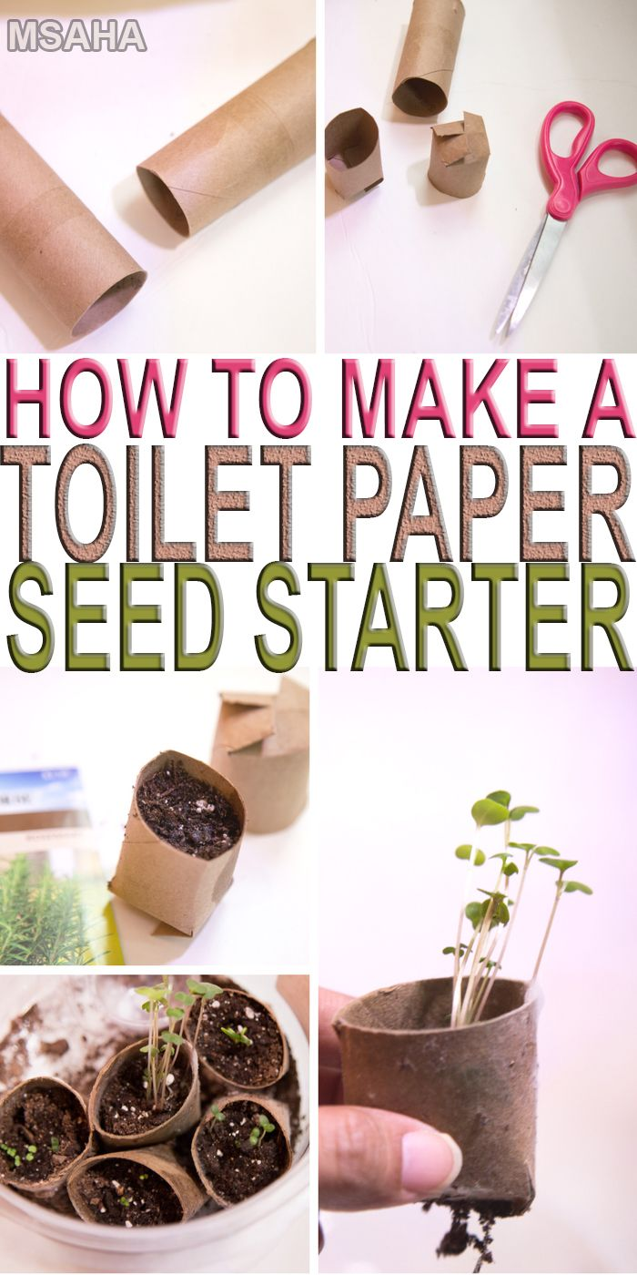 You start your garden with something as simple as a toilet paper seed starter and you will learn how easy and inexpensive it can be as well.