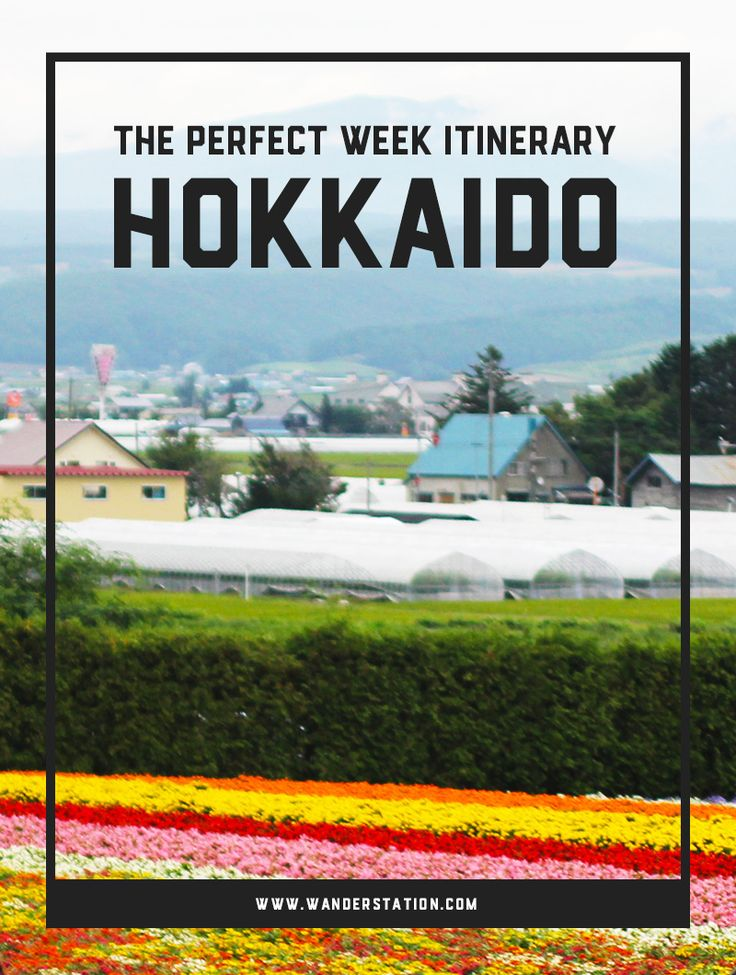 The ultimate 1-week itinerary in Hokkaido, Japan. Sights of interest include Sapporo, Otaru, Furano, Noboribetsu, and Hakodate. Indulge in history, nature, lavender farms, hot springs, and so much more!