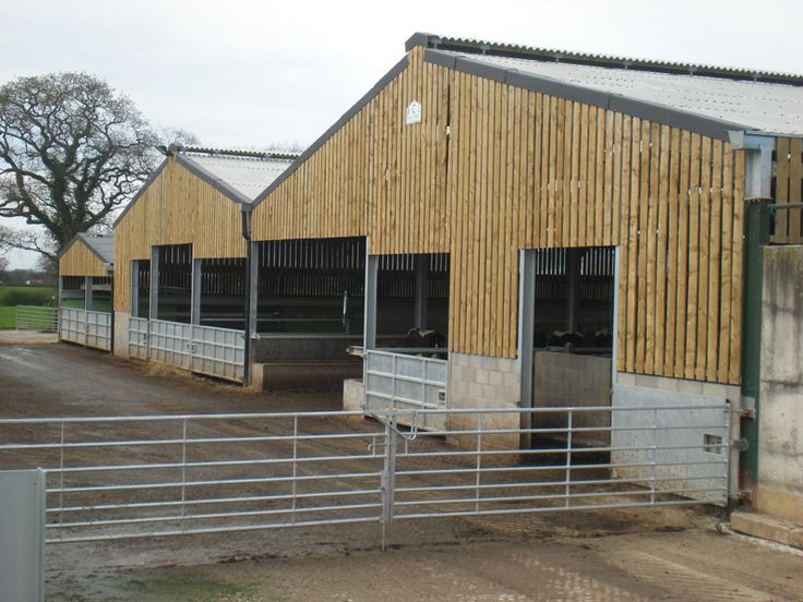 Agricultural Building Cattle Housing Big Beautiful Barns