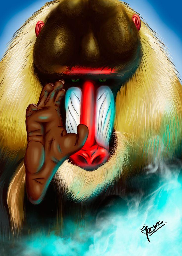 Mandril, JECKO JC on ArtStation at https://www.artstation.com/artwork/5eo5J