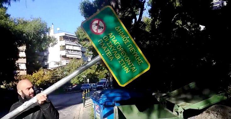 Νέα θέση απέκτησε πινακίδα απαγόρευσης σκύλων στη Πεύκη