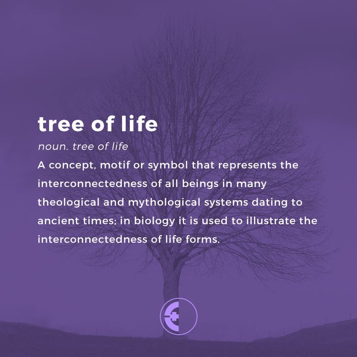 25 Beautiful Tree Of Life Meaning Ideas On Pinterest