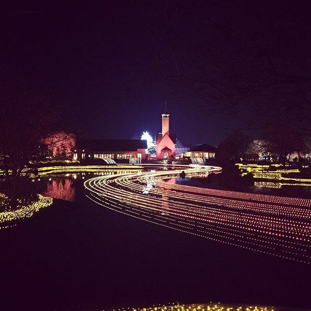 Instagram【shinichirou0917】さんの写真をピンしています。 《なばなの里 《イルミネーション》 #冬#夜景#電灯#電飾#アース#ライトアップ#カラフル#イルミネーション#なばなの里#三重#長島#副業#縁#引き寄せの法則 #winter#illumination#nightview#lightup#earth#colorful#nabananosato#Instalove#love#instagood#instagram #mie#nagasima #好きな人と繋がりたい #写真撮ってる人と繋がりたい #ファインダー越しの私の世界 現状を少しでも変えたいと思うならご連絡下さい💁🏻♂️ ~仲間を作り増やす取り組み~ お問合せはコチラまで@nbh5114a (@をお忘れなく)》