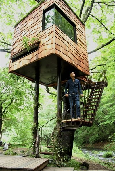 Modern tree house modern tree houses pinterest for Modern tree house designs